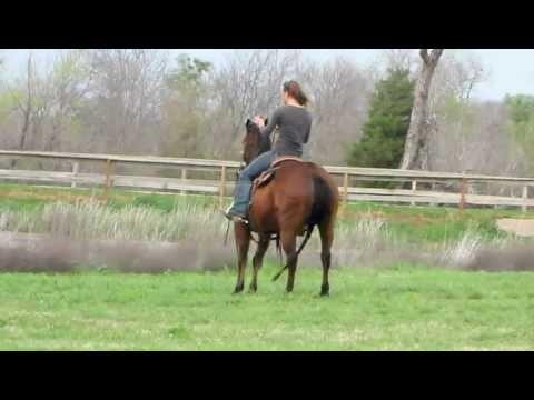 Big Enough - riding outside no bridle 1 - Valley View Ranch