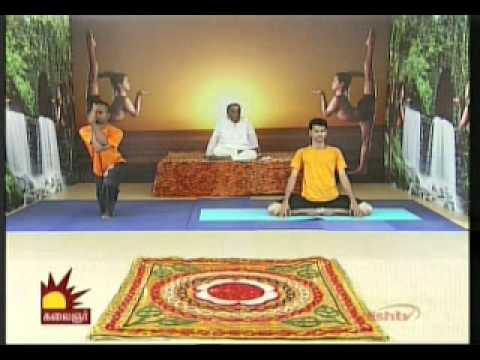 Dr  Asana Andiappan Kalaignar Tv Yoga Program 02 12 2013