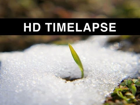 Time lapse of Snow melting [HD]