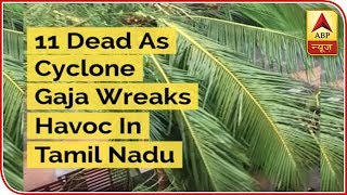 11 Dead As Cyclone Gaja Wreaks Havoc In Tamil Nadu - ABPNEWSTV