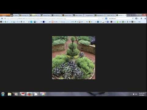 Gothic Gardening Week 1 Lesson