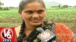 Farmers are busy with their cultivation due to rains in district - Warangal - V6NEWSTELUGU