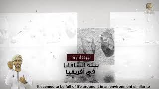 سلسلة آثار عمان جذورنا الأولى -الأثر الثامن والعشرون موقع المزيونة بمحافظة ظفار