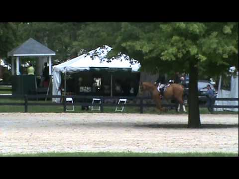 Deuce & Silvio - Upperville 2nd Yr Pre-Greens