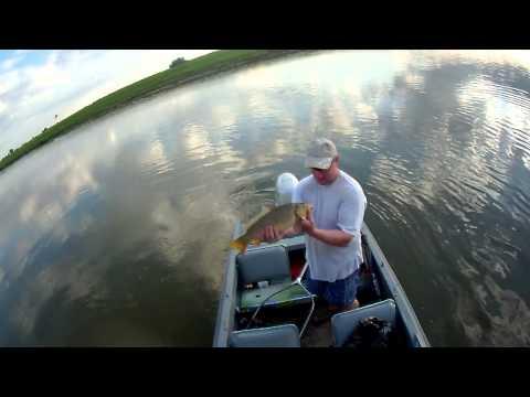 рыбалка в астрахани в апреле видео сазан