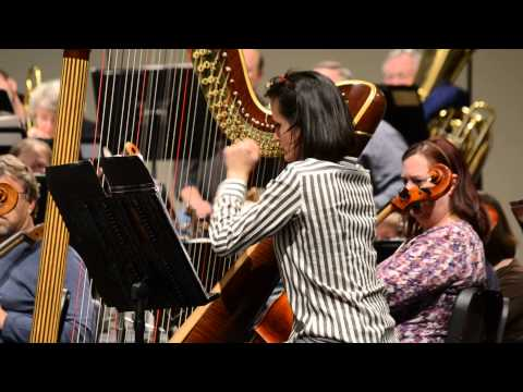 Grand Junction Symphony, Elise Helmke Harp