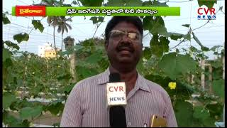 Success Story Of Organic Farmer Nagaraju | Nellore Dist | Raithe Raju | CVR News - CVRNEWSOFFICIAL