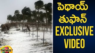 Pethai Cyclone | Huge Loss for Rice Crop Farmers in AP | Pethai Cyclone Updates | Mango News - MANGONEWS