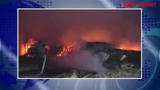 video : जालंधर में प्लाईवुड की फैक्ट्री में लगी भीषण आग