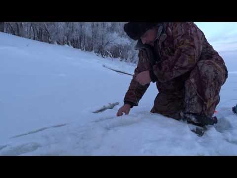 рыбалка на иртыше в омске 2016 весна