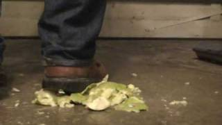 Red Wing 2408 Work Boots crush apples - YouTube