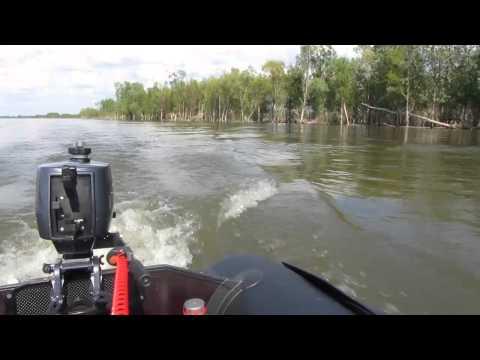 мотор 5 л.с лодка 260 видео