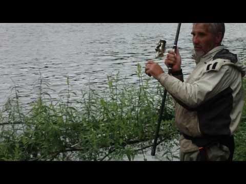 на что ловят лосося в финском заливе