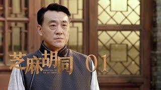 芝麻胡同 (55集全)何冰、王鷗、劉蓓