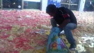 I rom rovinano la torta in Albania