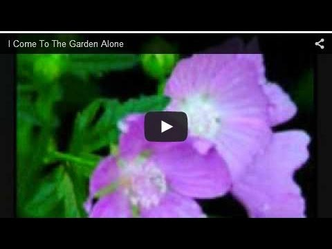 I Come To The Garden Alone -qAT9-f9lgb0
