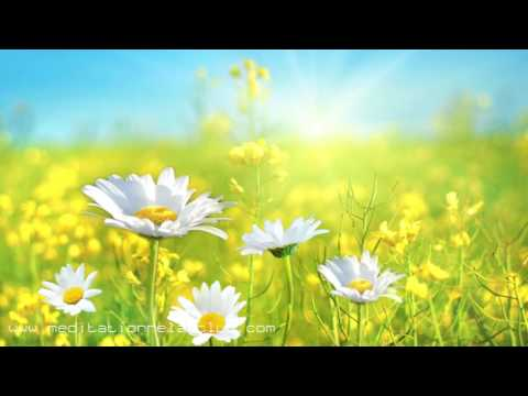 3 HOURS Anxiety Relief Music with Calming Sounds for Health, Stress and Depression Relief