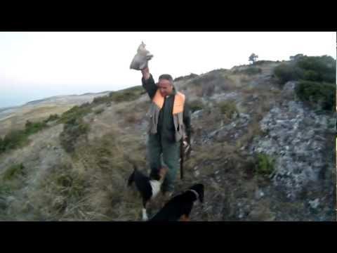 κυνηγι λαγος dabi 2011 Νο 2 HARE HUNTING