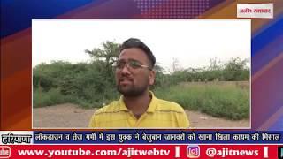 video : लॉकडाउन व तेज गर्मी में इस युवक ने बेजुबान जानवरों को खाना खिला कायम की मिसाल
