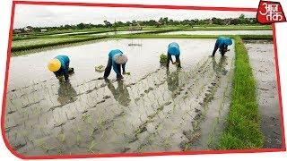 संसदीय समिति के सामने कृषि मंत्रालय ने माना- किसानों पर नोटबंदी का हुआ बुरा असर - AAJTAKTV