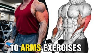 10 Arm Exercises for Bigger Arms - Biceps and Triceps Workout10 Arm Exercises for Bigger Arms - Biceps and Triceps Workout