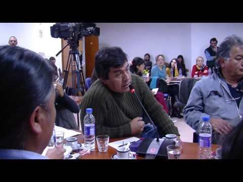 Universidad intercultural indígena - Alcira Argumedo