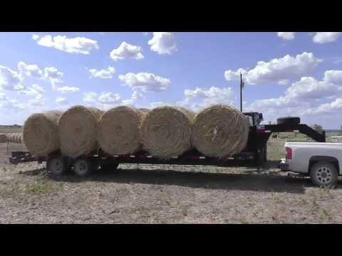 Hauling Hay With LML Duramax