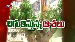 Peolple Restoration Works To Bring Greenery Back | Visakhapatnam : TV5 News - TV5NEWSCHANNEL