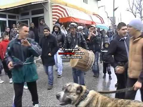 Tigri Champion Festa e Fitores.avi