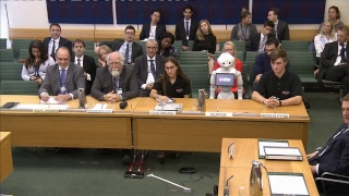 Pepper the robot gives evidence in Parliament - SKYNEWS