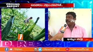 Sudden Rains Destroyed Crops in Khammam | Farmers Seeks Govt Help | Ground Report | iNews - INEWS