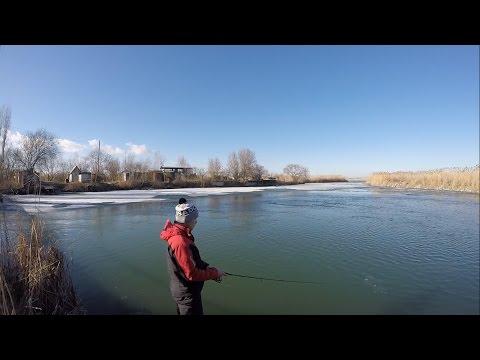 рыбалка в приморско-ахтарском районе видео