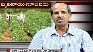 Annapurna Special Programme 05.03.2014 - TV5NEWSCHANNEL