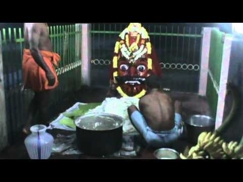 Aravan Booja Preparations at Kallimedu Throwpathai Amman Temple