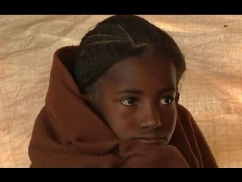 Malian refugees fight hunger in the Niger