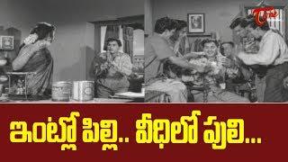 ఇంట్లో పిల్లి.. వీధిలో పులి.. | ANR & Savitri Ultimate Movie Scenes | TeluguOne - TELUGUONE