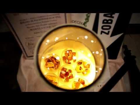 Wystawy i Gieldy Mineralów, Skal, Skamienialosci i Wyrobów Jubilerskich