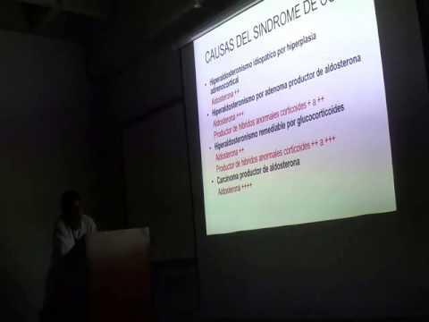 Fisiologia de la Aldosterona y Fisiopatologia de la Glándula Suprarrenal