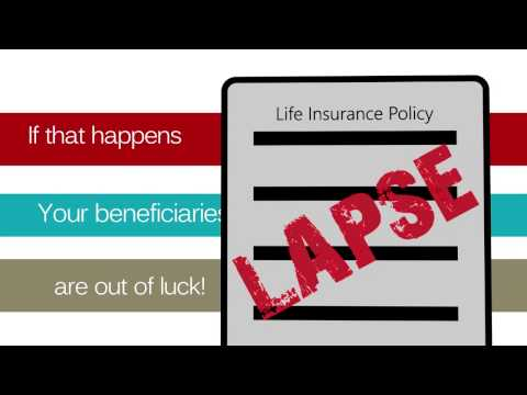 Life Insurance Review and Policy Audit
