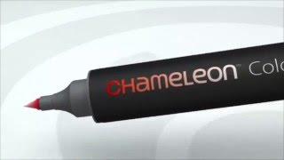 Обзорное видео по маркерам Chameleon