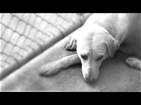 [Teaser] สุดสัปดาห์ คนหล่อขอทำดี ปี8 ไนกี้ (SudsapdaTV)