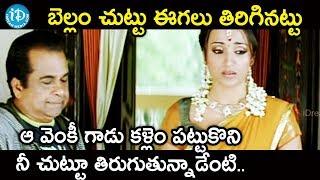 బెల్లం చుట్టు ఈగలు తిరిగినట్టు ఆ వెంకీ గాడు నీ చుట్టూ తిరుగుతున్నాడేంటి? || Namo Venkatesha Movie - IDREAMMOVIES