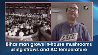 Video - Bihar के व्यक्ति ने AC के तापमान का Use कर घर में उगाए Mushrooms