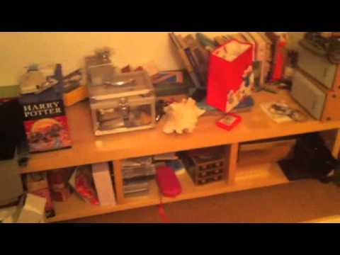 FLog Day 27 My Childhood Room Tour 