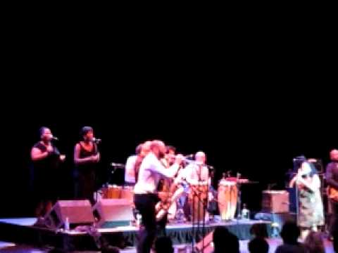 Sharon Jones & The Dap-Kings live