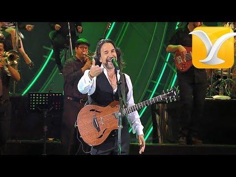 Marco Antonio Solis - O me voy o te vas  - Festival de Viña del Mar 2016 HD