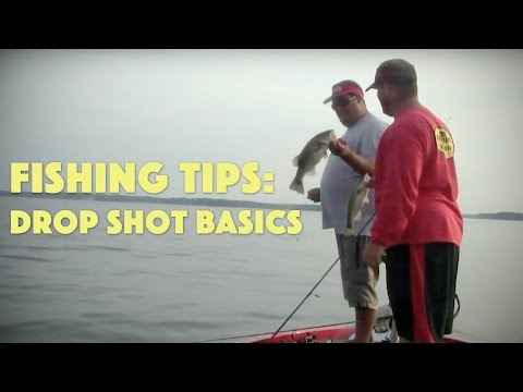 How to Get Started Drop Shot Fishing