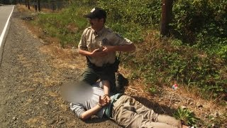 Subject Resists Arrest, Chased Down by Fish and Wildlife Officer - ANIMALPLANETTV