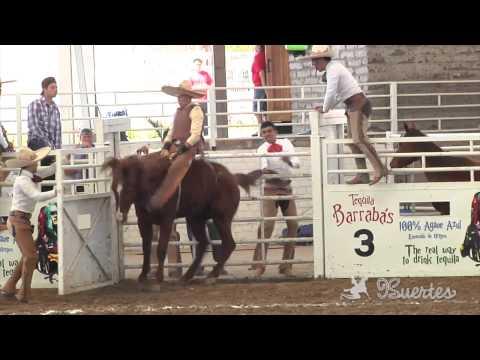 Mejores Montas de Yegua - 2do. Torneo Charro Arena Vallarta