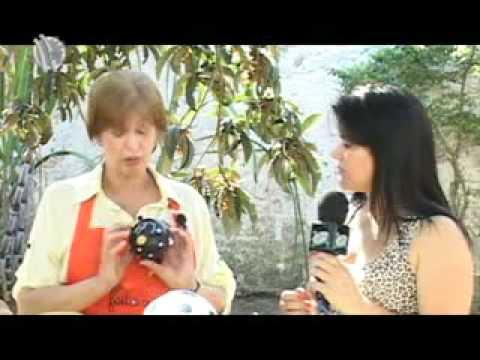 Tv de Bem com Erika Lemes- Aprenda a fazer uma galinha de cabaça- 28/09/2012